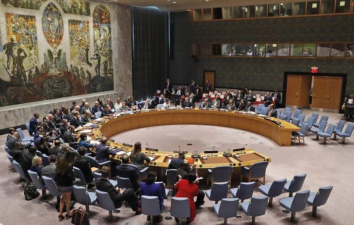 Совбез ООН принял резолюцию о продлении трансграничной помощи Сирии - ảnh 1