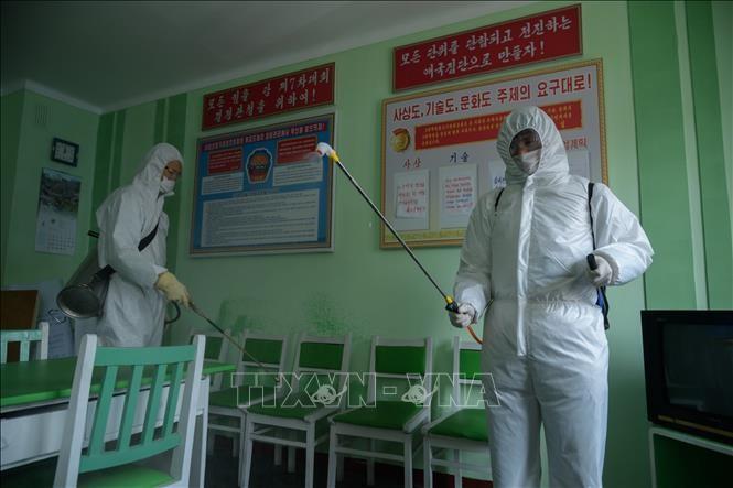 Совбез ООН разрешил ЮНИСЕФ поставлять медоборудование в КНДР - ảnh 1