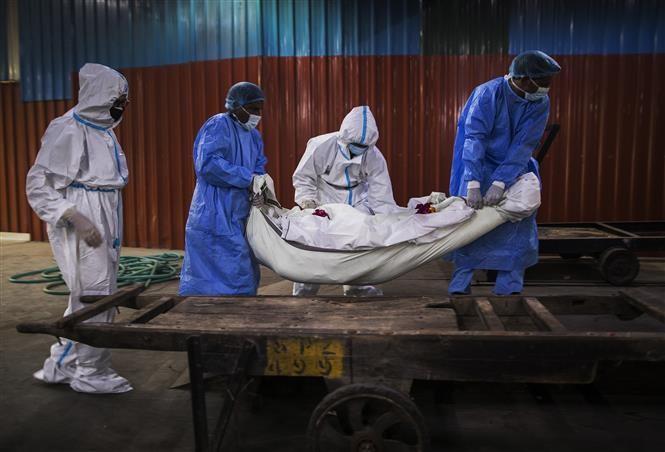 В мире коронавирусом заразились около 23,415 млн человек - ảnh 1