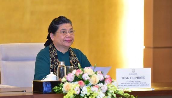 АИПА демонстрирует позиции и роль вьетнамской дипломатии - ảnh 1