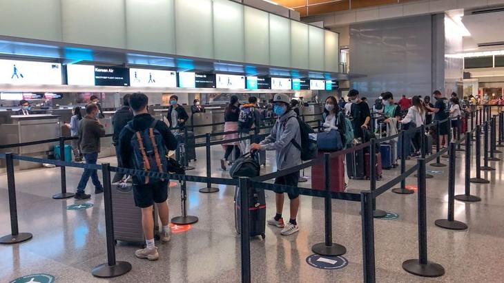 Почти 350 вьетнамских граждан вывезены из США на Родину - ảnh 1