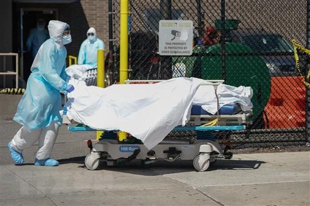 Число зараженных коронавирусом в мире превысило 28,6 млн человек - ảnh 1