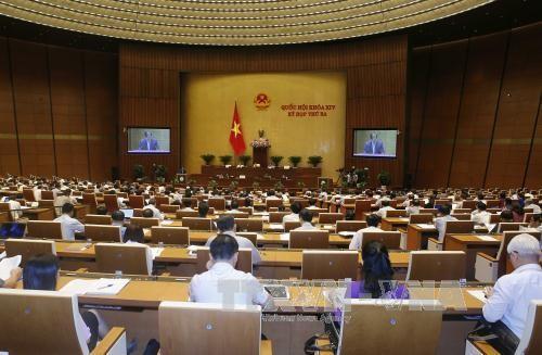 Établir 16 projets de loi supplémentaires pour répondre au développement du pays - ảnh 1