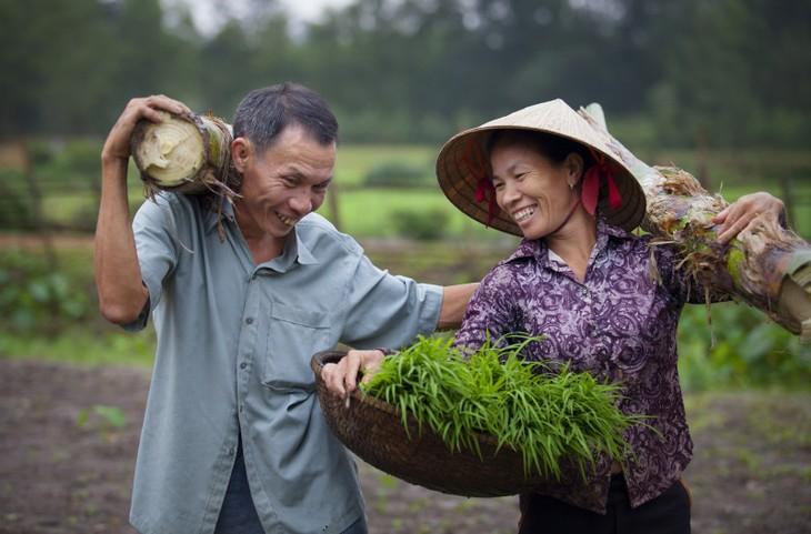 Acquis importants du Vietnam dans le domaine de l'égalité des genres - ảnh 1