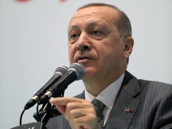 Syrie: la Turquie vise l'encerclement total de la ville kurde d'Afrine - ảnh 1