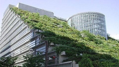 Développer les bâtiments verts - ảnh 1