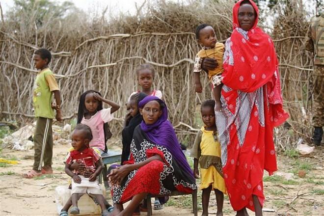 L'ONU veut mobiliser 2,7 milliards de dollars pour les réfugiés du Soudan du Sud - ảnh 1