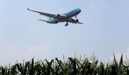L'administration fédérale de l'aviation des États-Unis classe le Vietnam en catégorie 1 - ảnh 1