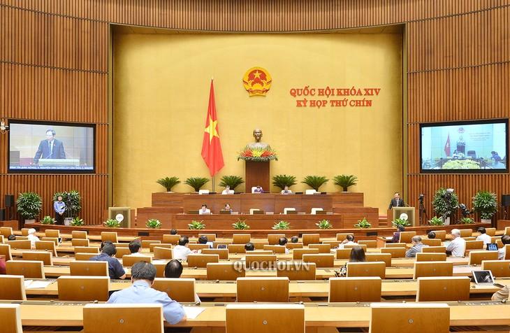 Neuvième session: L'Assemblée nationale termine la dernière journée de travail en ligne - ảnh 1