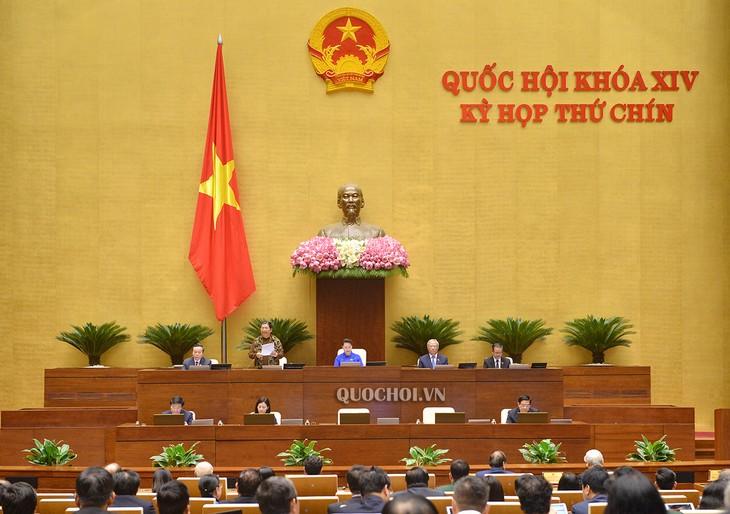 9e session de la 14e législature: une session spéciale  - ảnh 1