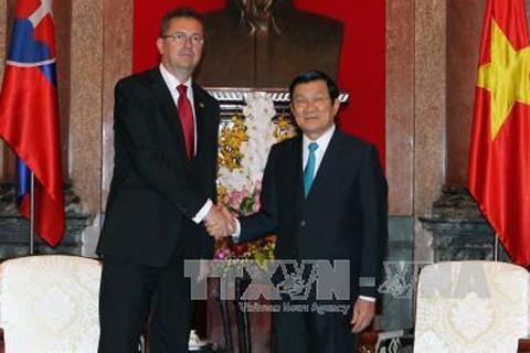 Việt Nam và Slovakia thúc đẩy hợp tác quốc phòng - ảnh 1