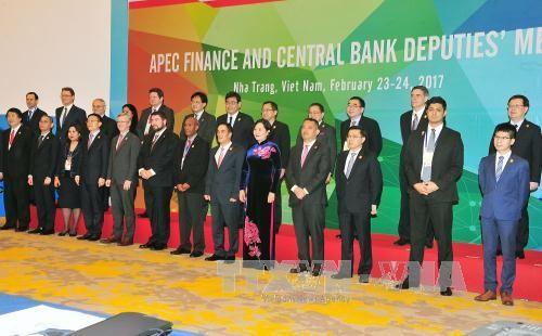 Khai mạc Hội nghị Thứ trưởng Tài chính và Phó Thống đốc Ngân hàng Trung ương APEC 2017 - ảnh 1