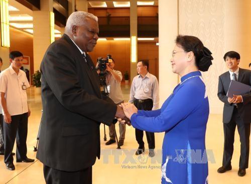 Chủ tịch Quốc hội Việt Nam hội đàm với Chủ tịch Quốc hội Cuba - ảnh 1