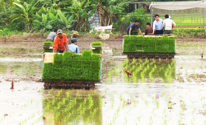 Nông dân ngoại thành Hà Nội đẩy mạnh cơ giới hóa trong sản xuất nông nghiệp - ảnh 1