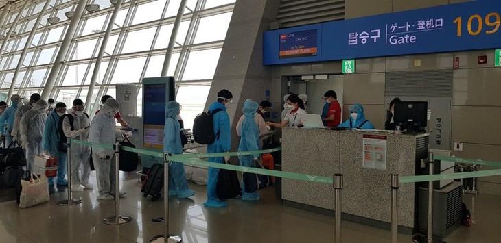 Đưa hơn 230 công dân Việt Nam từ Hàn Quốc về nước an toàn - ảnh 1