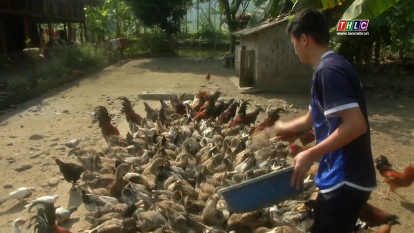 Chương trình mỗi xã một sản phẩm (OCOP) ở tỉnh Lào Cai - ảnh 2