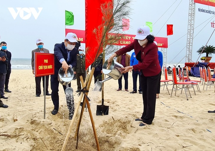 Phó Chủ tịch nước Đặng Thị Ngọc Thịnh phát động Tết trồng cây tại Quảng Bình - ảnh 1