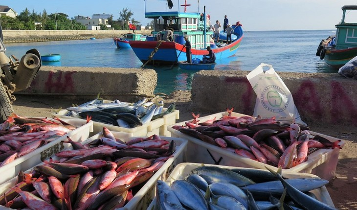 Chả cá Lý Sơn - ảnh 1