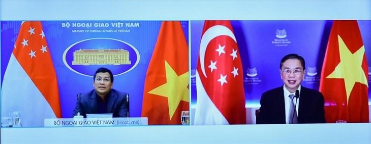 Việt Nam và Singapore tăng cường hợp tác phòng chống dịch COVID-19 - ảnh 1