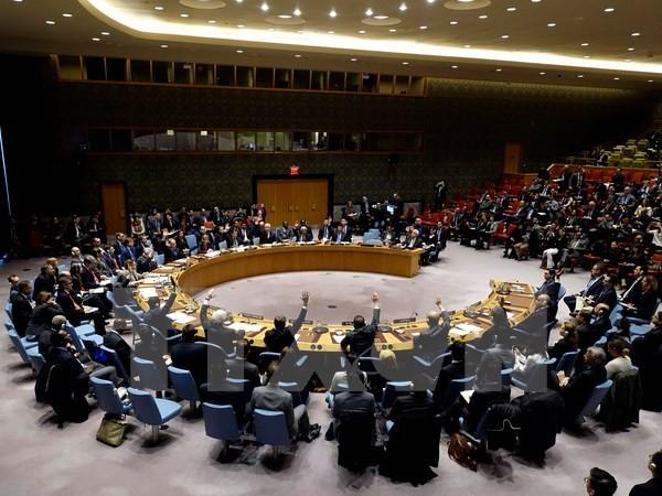 เวียดนามเรียกร้องให้สหประชาชาติให้ความสนใจร่างยุทธศาสตร์ป้องกันการปะทะในระยะยาว - ảnh 1