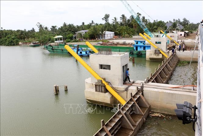ปัญหาน้ำทะเลซึมในเขตที่ราบลุ่มแม่น้ำโขงมีแนวโน้มลดลง - ảnh 1