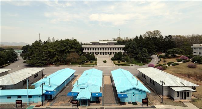 สาธารณรัฐเกาหลีส่งเสริมโครงการร่วมมือระหว่างสองภาคเกาหลี - ảnh 1