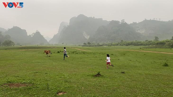 ทุ่งหญ้าด่งเลิม จุดหมายปลายทางที่น่าสนใจสำหรับการไปปิกนิก - ảnh 4